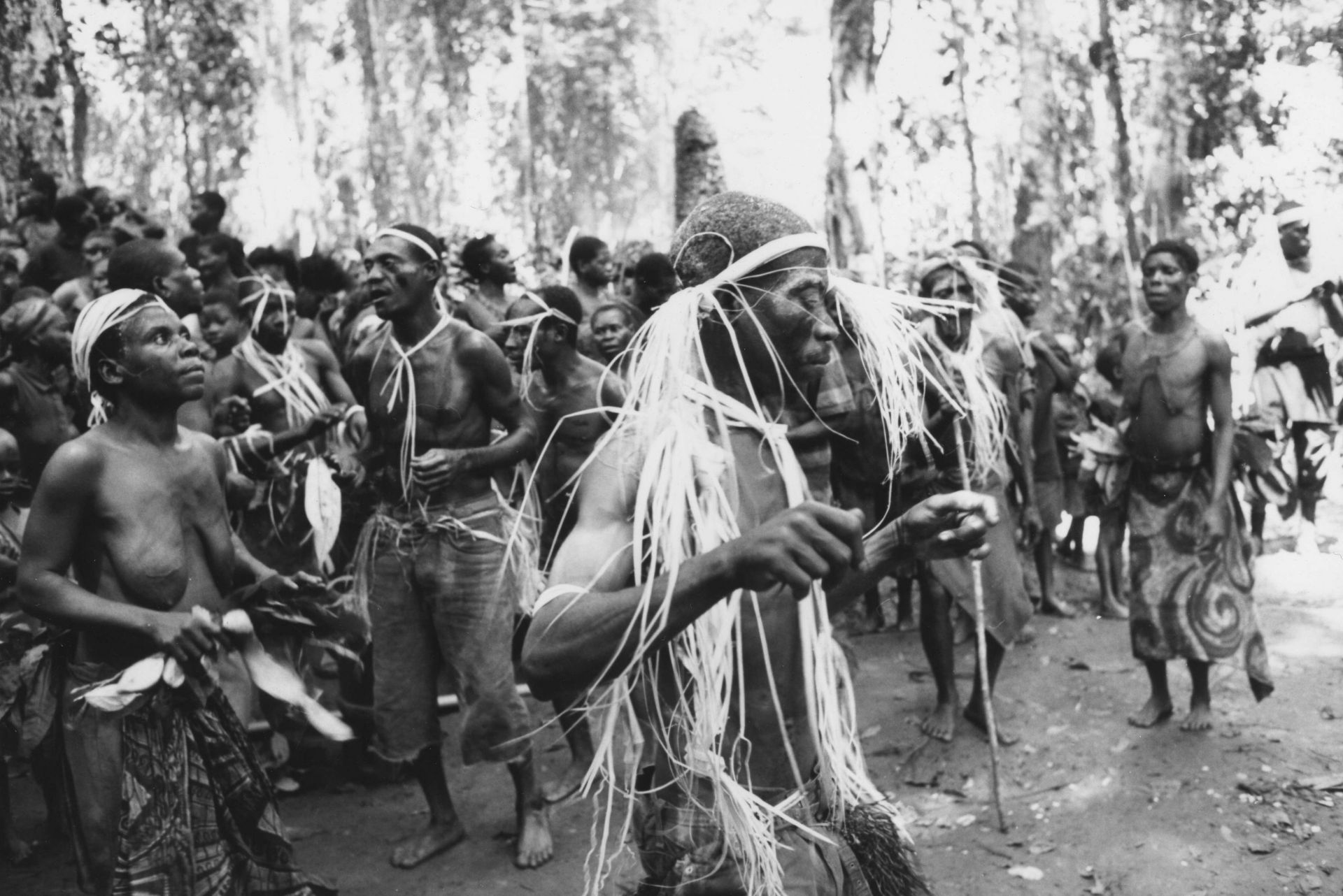 Image result for bulu tribe africa
